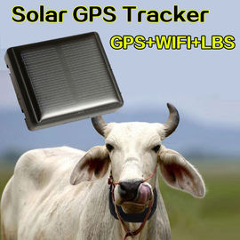 animale gps tracker